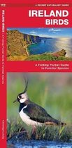 Ireland Birds