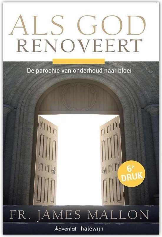 Als God renoveert - James Mallon |