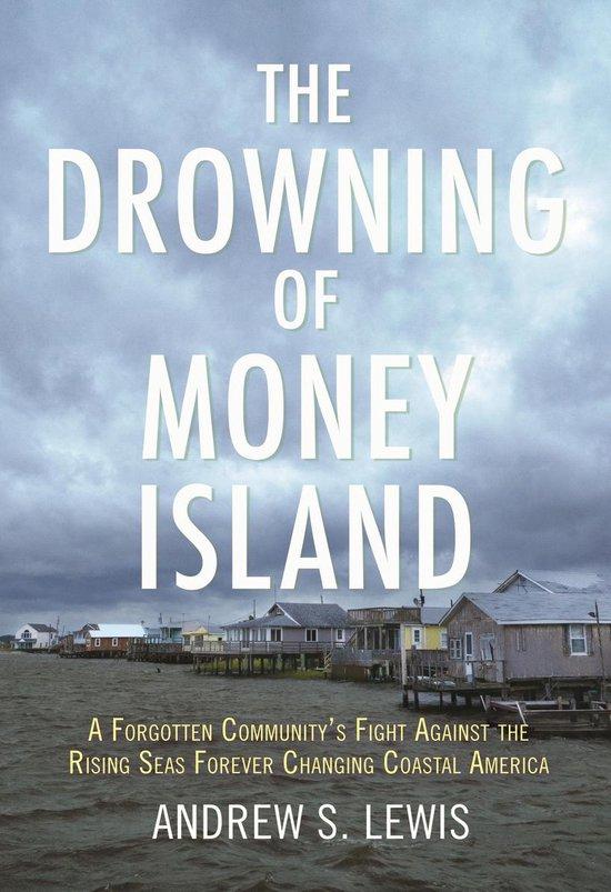 Boek cover The Drowning of Money Island van Andrew S. Lewis (Paperback)