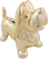 Dieren spaarpot gouden teckel 20,5 cm - Honden cadeau spaarpotten