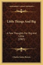 Little Things and Big Little Things and Big
