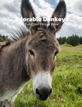 Adorable Donkeys Full-Color Picture Book