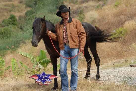 Korte western waxjacket Stars&Stripes RANGE RIDER CORN XXL