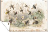 Een illustratie van een groep bijen tuinposter 90x60 cm - Tuindoek / Buitencanvas / Schilderijen voor buiten (tuin decoratie)