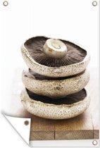 Stapel champignons Tuinposter 120x180 cm - Tuindoek / Buitencanvas / Schilderijen voor buiten (tuin decoratie) XXL / Groot formaat!