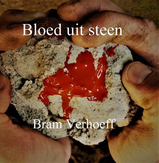 Bloed uit Steen - Bram Verhoeff | Fthsonline.com