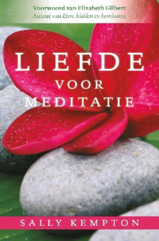 Liefde voor meditatie - Sally Kempton |