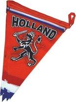 Oranje vlaggenlijn met leeuw