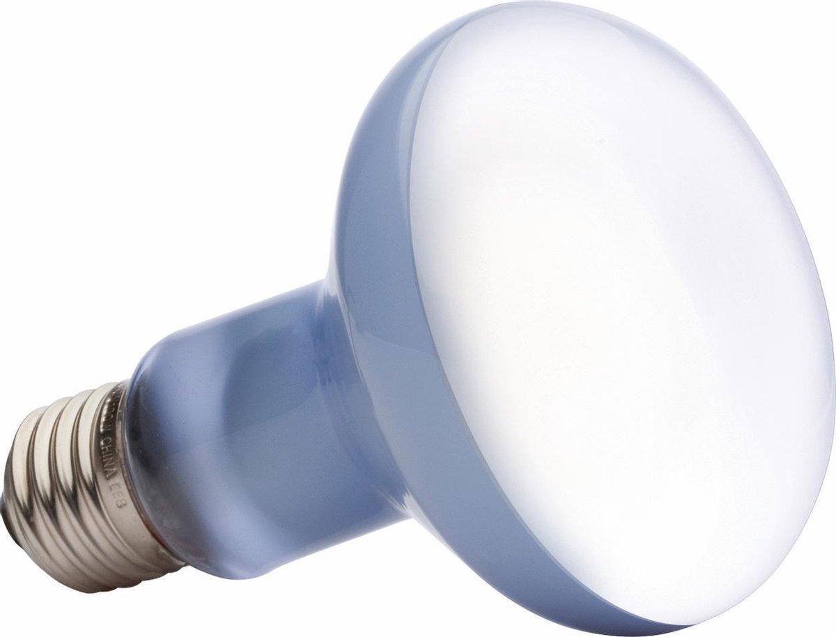 Exo Terra Daylight Basking Spot lamp - Terrarium Verlichting - 100W
