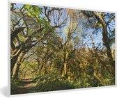 Foto in lijst - De jungle in het nationaal park Calilegua met helderblauwe lucht in Argentinië fotolijst wit 60x40 cm - Poster in lijst (Wanddecoratie woonkamer / slaapkamer)