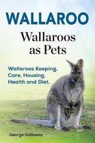 Wallaroo. Wallaroos as Pets. Wallaroos Keeping, Care, Housing, Health and Diet.