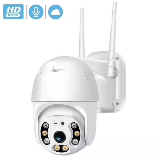 Wifi Smart Waterdichtheid IP66 Draadloze Dome IP camera - buiten - draai- en kantelbaar - FULL HD 1080P