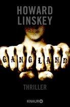 Boek cover Gangland van Howard Linskey