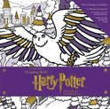 Harry potter: winter at hogwarts: magical colouring set