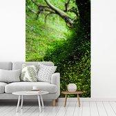 Gloeiwormen in een groen landschap tijdens daglicht fotobehang vinyl breedte 180 cm x hoogte 270 cm - Foto print op behang (in 7 formaten beschikbaar)