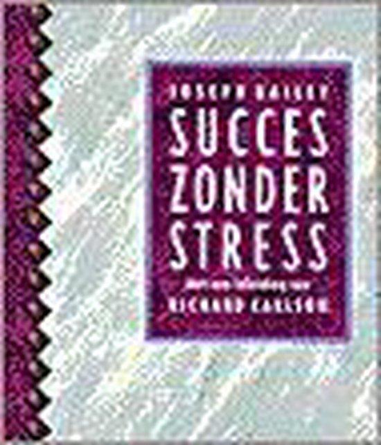 Succes Zonder Stress - Joseph Bailey |