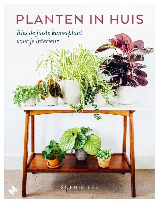 Planten in huis - Sophie Lee | Readingchampions.org.uk