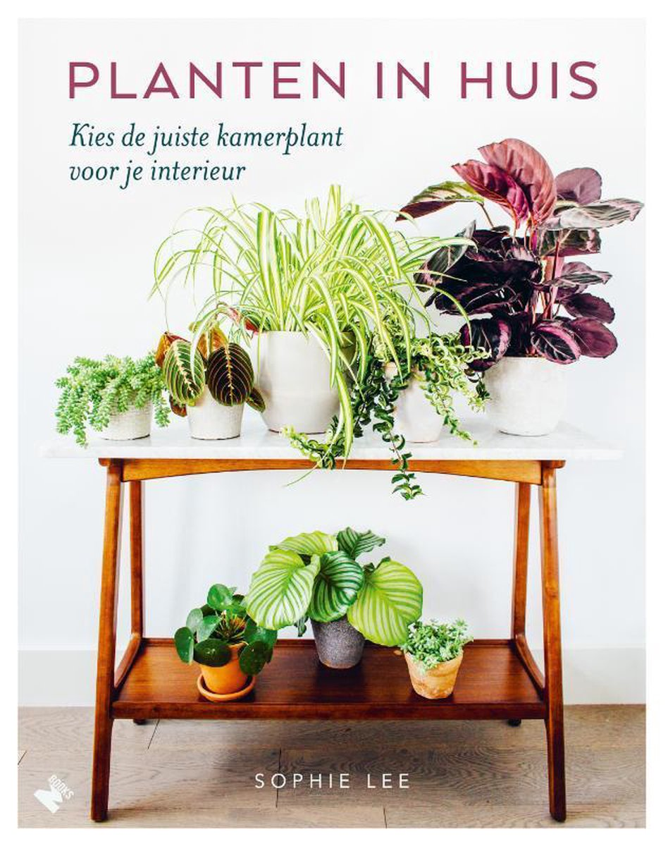 bol.com | Planten in huis, Sophie Lee | 9789022334065 | Boeken