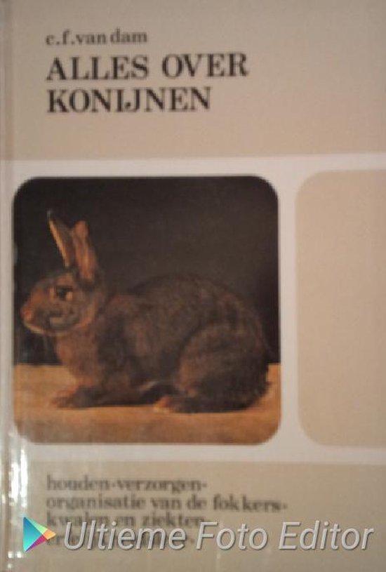 Alles over konijnen - DAM pdf epub