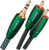 AudioQuest Evergreen 3.5mm - 2xRCA 1m (mini jack naar tulp verloopkabel)