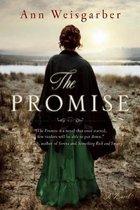 Boek cover The Promise van Ann Weisgarber