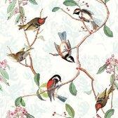Ambiente Servetten Birdsong
