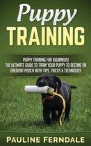 Puppy Training