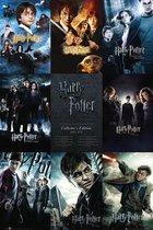 Harry Potter poster overzicht filmposters formaat 61x91.5cm.