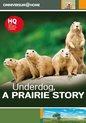 Underdog Prairie Story