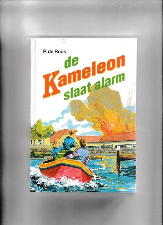 De kameleon slaat alarm - Ruud Hameeteman |