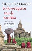 In de voetsporen van de Boeddha