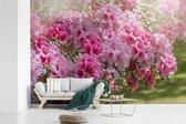 Fotobehang vinyl - Zomerse kleuren van de hortensia breedte 390 cm x hoogte 260 cm - Foto print op behang (in 7 formaten beschikbaar)
