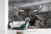 Fotobehang vinyl - Schattige Schotse hooglander zwart wit breedte 420 cm x hoogte 280 cm - Foto print op behang (in 7 formaten beschikbaar)