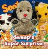 Sweep's Super Surprise