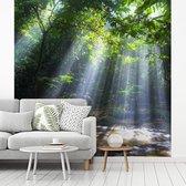 Fotobehang vinyl - Zonnestralen schijnen in het regenwoud van Maleisië breedte 260 cm x hoogte 260 cm - Foto print op behang (in 7 formaten beschikbaar)
