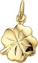 The Jewelry Collection Bedel Klavertje 2-zijdig - Goud