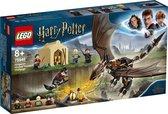 LEGO Harry Potter Hongaarse Hoornstaart Toverschool Toernooi - 75946
