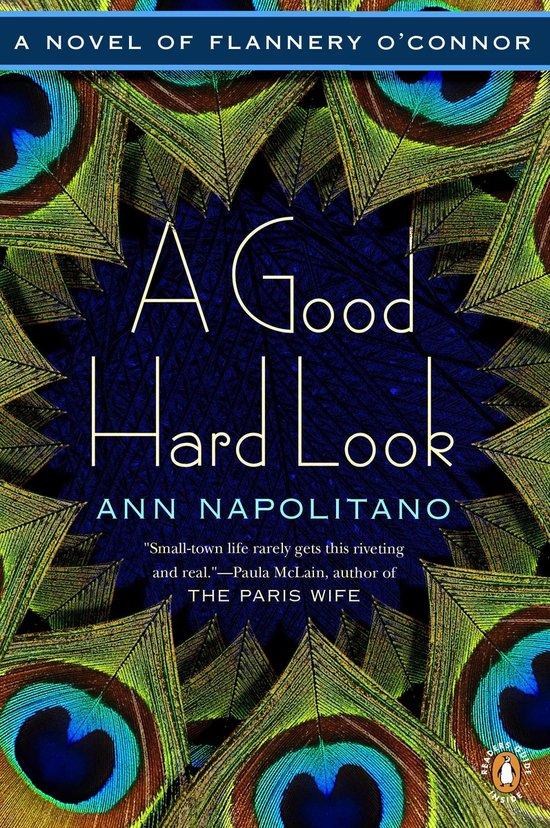 Boek cover A Good Hard Look van Ann Napolitano (Onbekend)