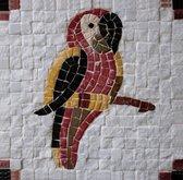 Mozaiek maken van natuurstenen - Neptune Mosaic, mosaikit - Papegaai