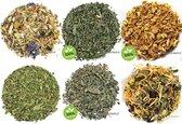 Losse thee pakket detox thee - 6 soorten - Thee cadeau