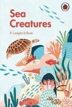 A Ladybird Book