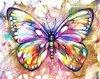 Gekleurde Vlinder 30*40