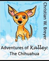 Adventures of Kalley: the Chihuahua