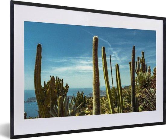 Foto in lijst - Cactussen aan de kust van de Middellandse Zee fotolijst 60x40 cm - Poster in lijst (Wanddecoratie woonkamer / slaapkamer) / Zee en Strand