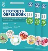 Delen 1, 2 en 3  -  Citotoets Oefenboeken groep 6