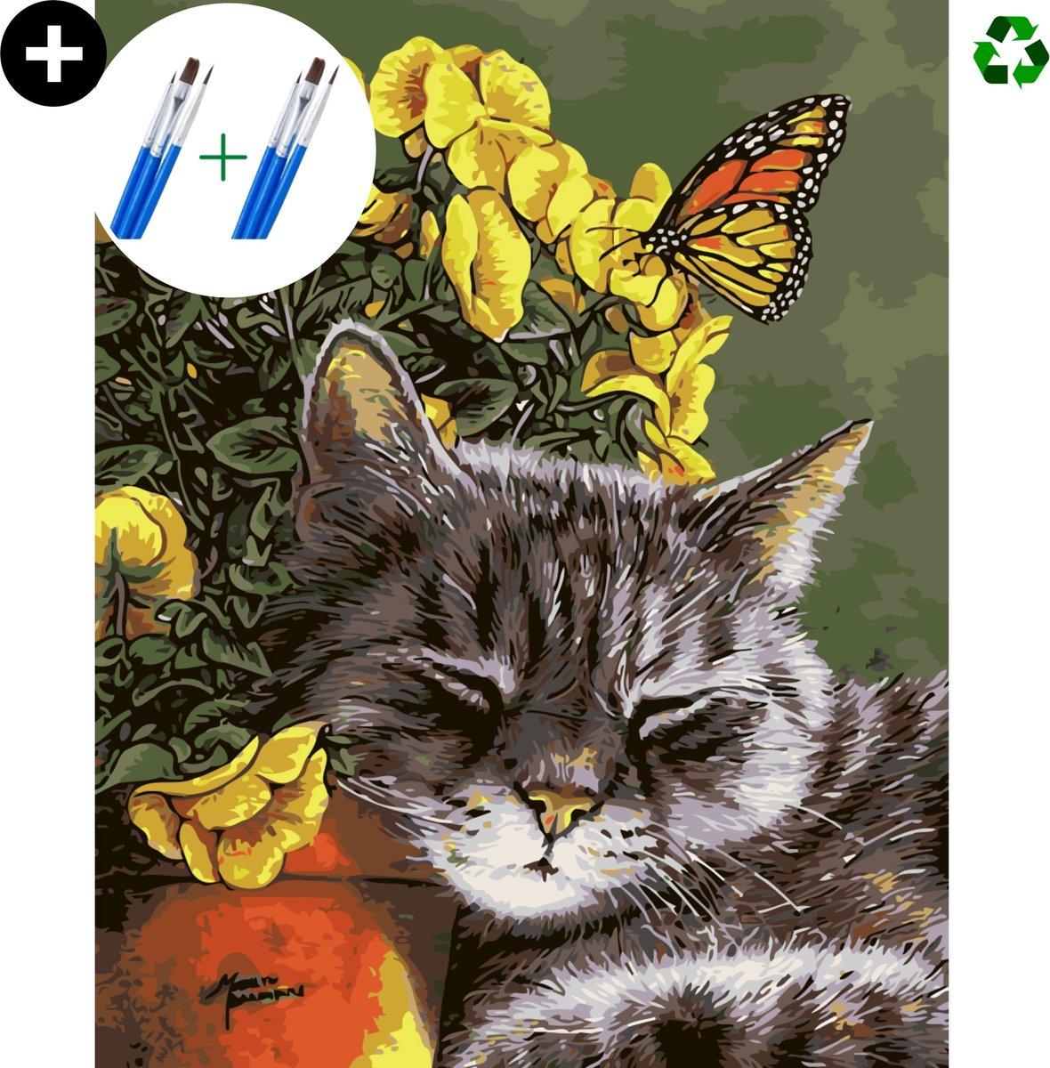 deeds.® - Schilderen op nummer volwassenen - Paint by number - Verven op nummer - Kat - Dieren - Poes - DIY set +Extra Penselen!
