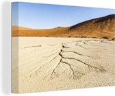 Wateraders in de droge grond van de Dodevlei in Afrika Canvas 140x90 cm - Foto print op Canvas schilderij (Wanddecoratie woonkamer / slaapkamer)