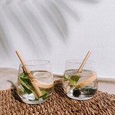 Herbruikbare Bamboe Rietjes   Lengte 12cm   15 Stuks   Incl Schoonmaak Borstel & Tasje   Plastic Vrij