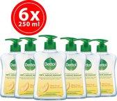 Dettol Gel Pump Citrus - 6 x 250 ml