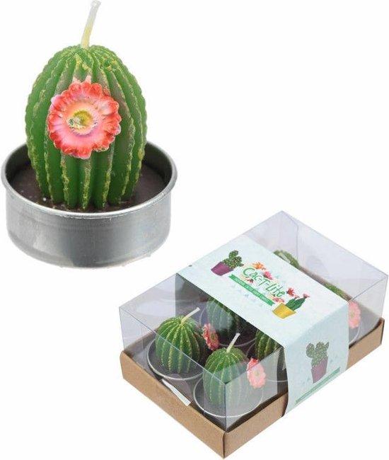 Waxinelichtje cactus groen rode bloem set van 6